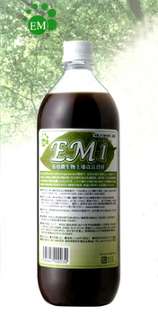 EM1.jpg